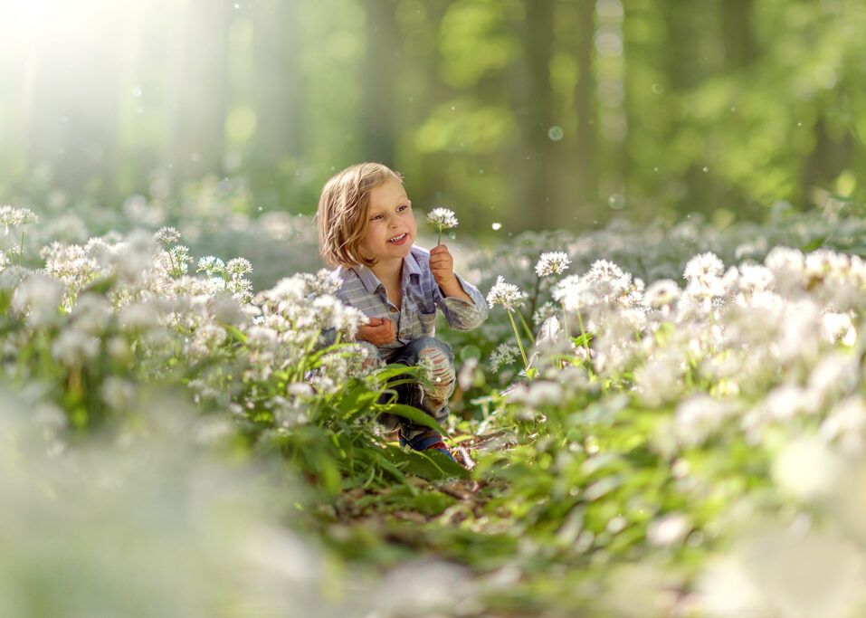 boy-picking-a-white-flower-of-a-wild-garlic, child-portrait-from-a-Spring-Outdoor-Family-Photoshoot-in-Nottinghamshire-and-Derbyshire